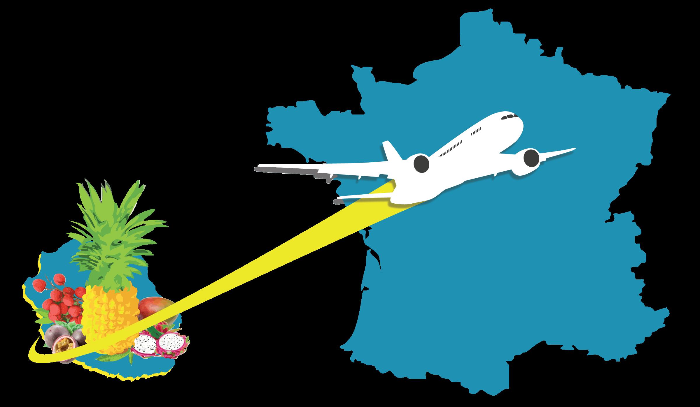 EXPORTATION VERS LA FRANCE